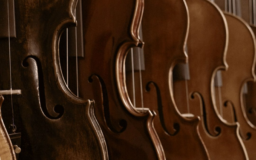 Amati Violin Shop