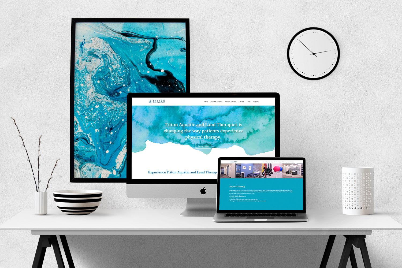 portfolio-triton-web